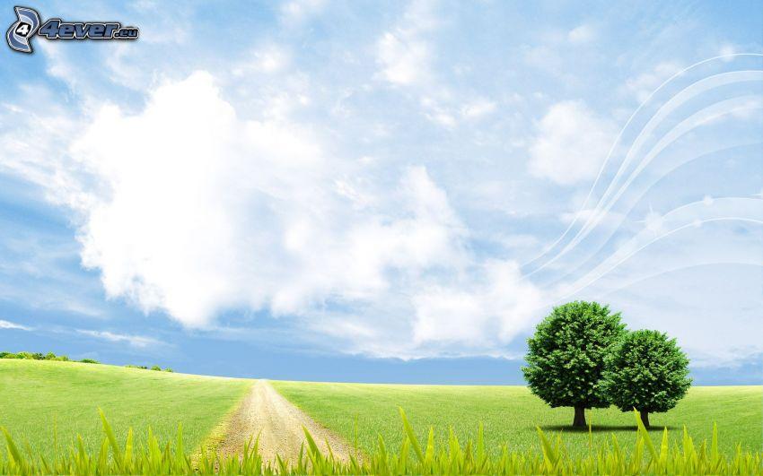 samotne drzewa, łąka, polna droga, niebo