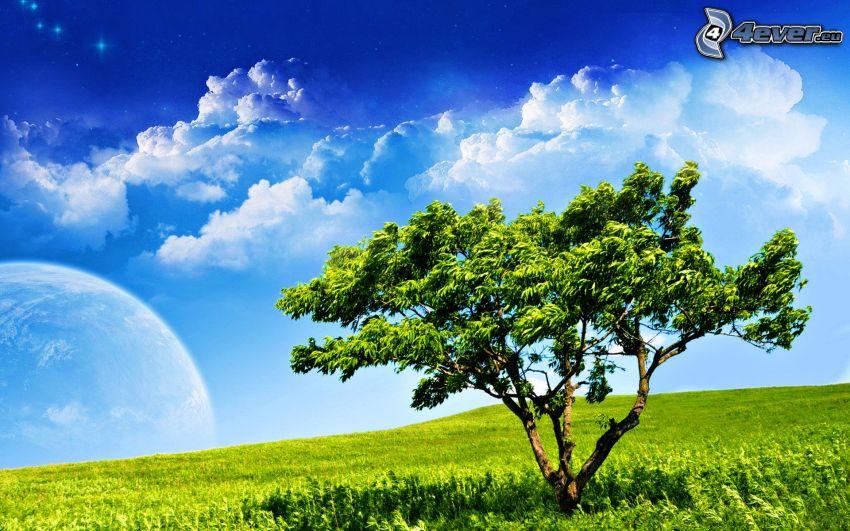 samotne drzewo, łąka, planeta, chmury