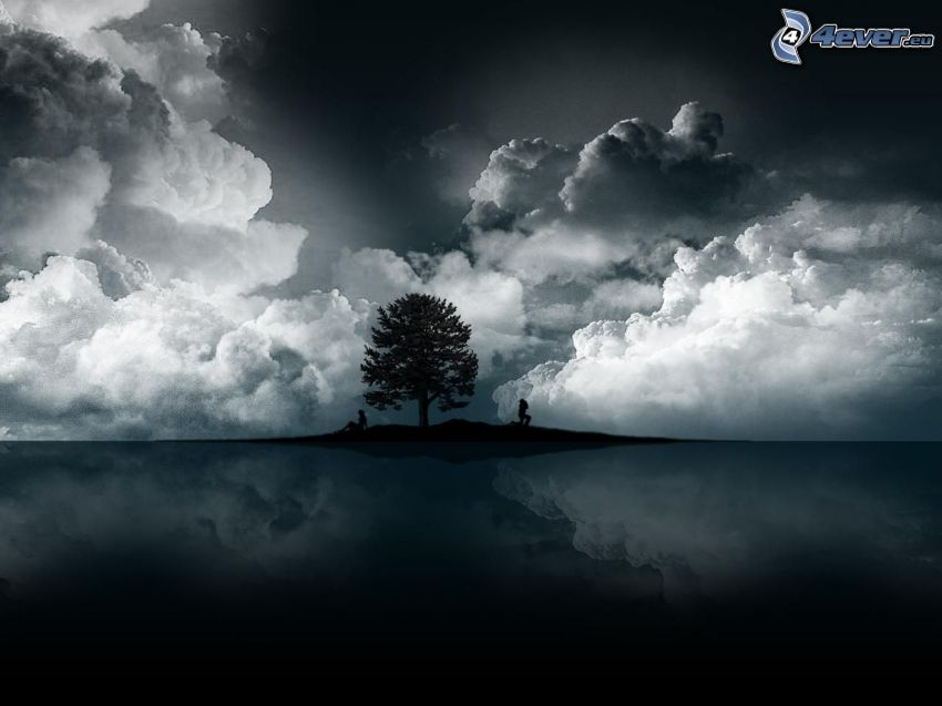 sylwetka drzewa, ciemne chmury, odbicie