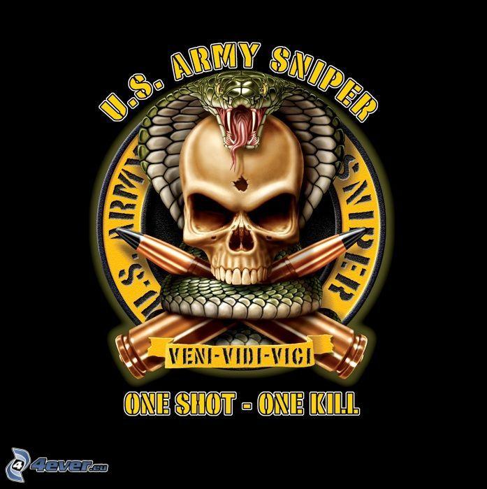 U.S. Army sniper, one shot - one kill, czaszka, wąż, amunicja