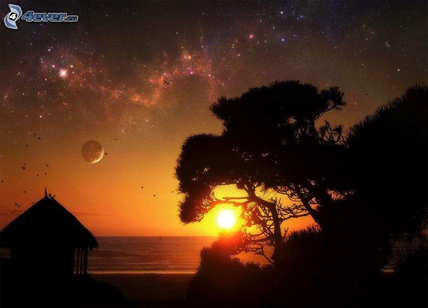 zachód słońca, sylwetka drzewa, morze, planeta, mgławice