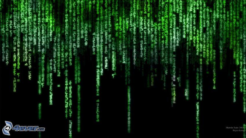 zielony kod, Matrix