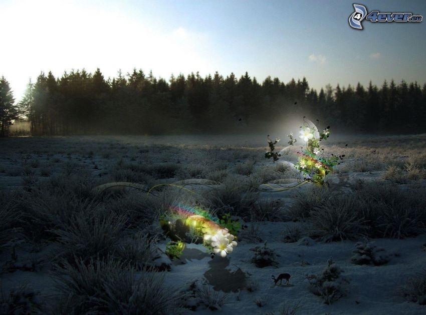 zimowy krajobraz, śnieg, abstrakcyjne kwiaty, wieczór
