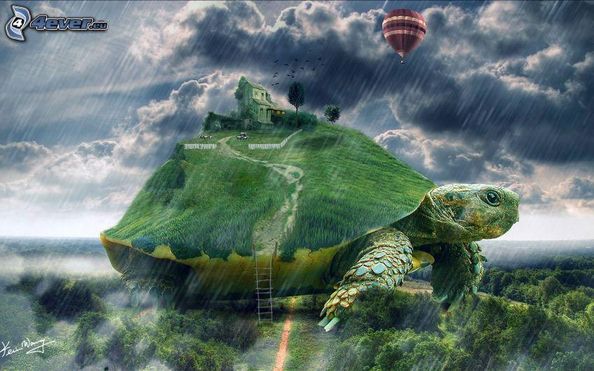 żółw, dom, latający balon, burza