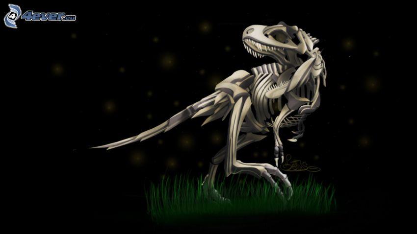 dinozaur, szkielet