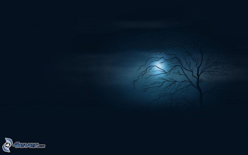 drzewo, ciemność