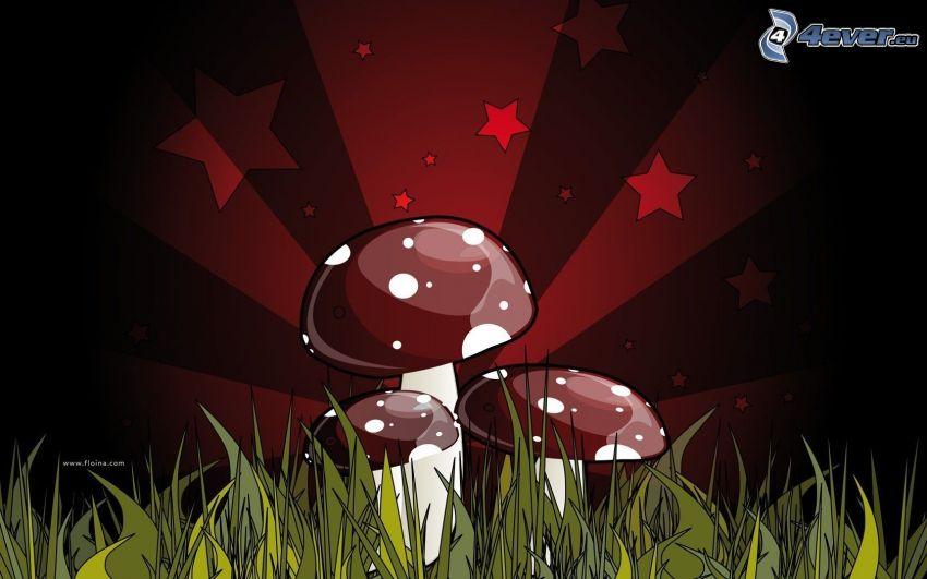 grzyby, trawa, gwiazdy, paski