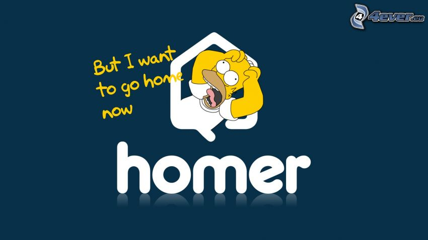 Homer Simpson, text