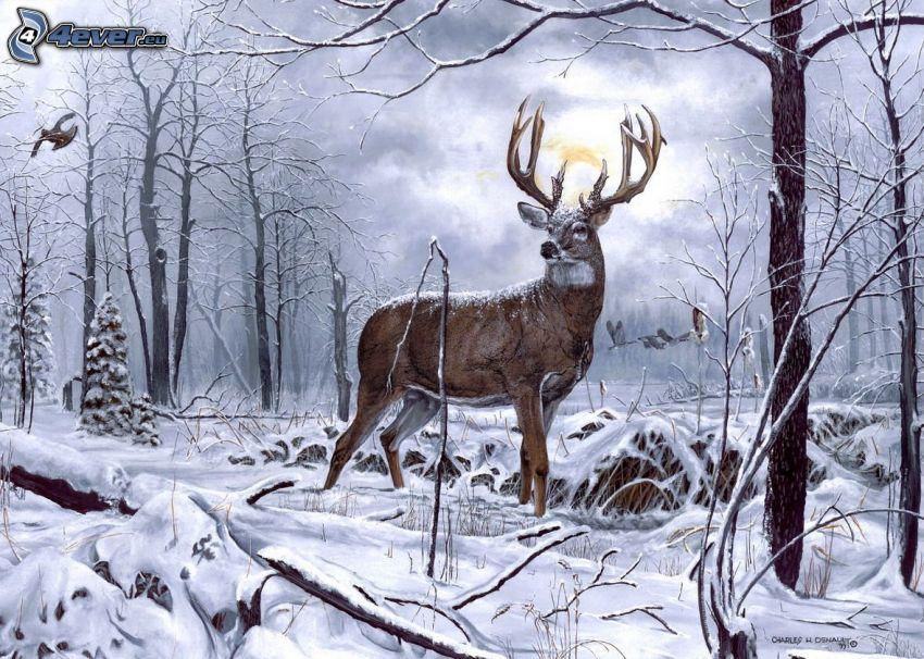 jeleń, śnieżny krajobraz