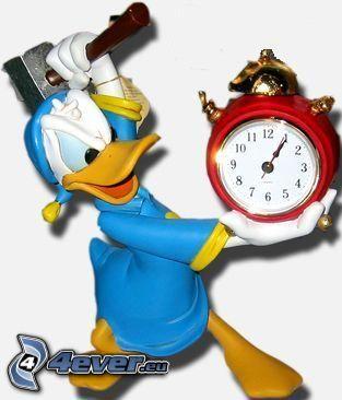 Kaczor Donald, budzik, młotek