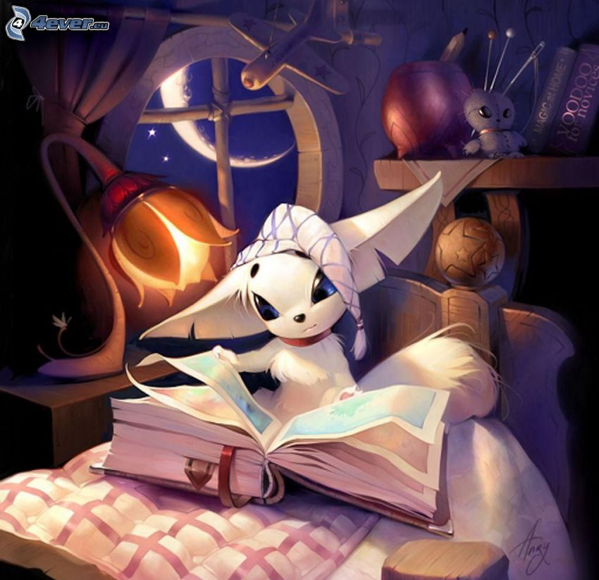 kot rysunkowy, biały kot, książka, lampa, noc