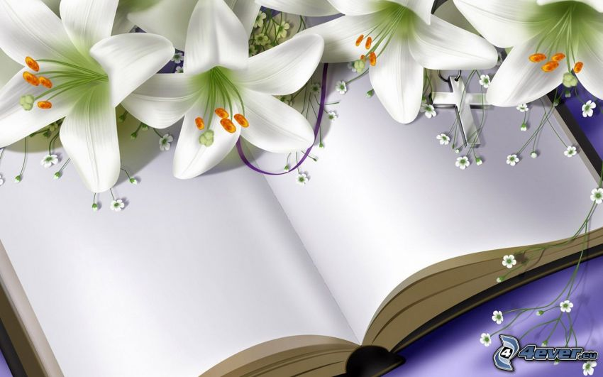 książka, lilie