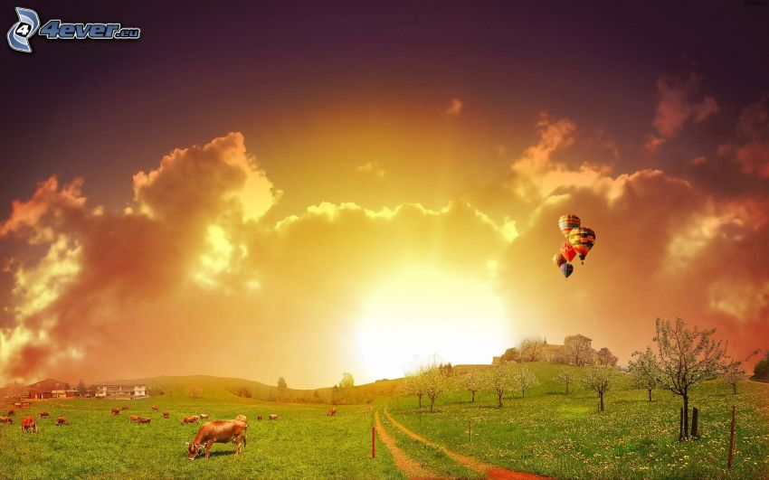 łąka, latające balony, krowy, kwitnące drzewa