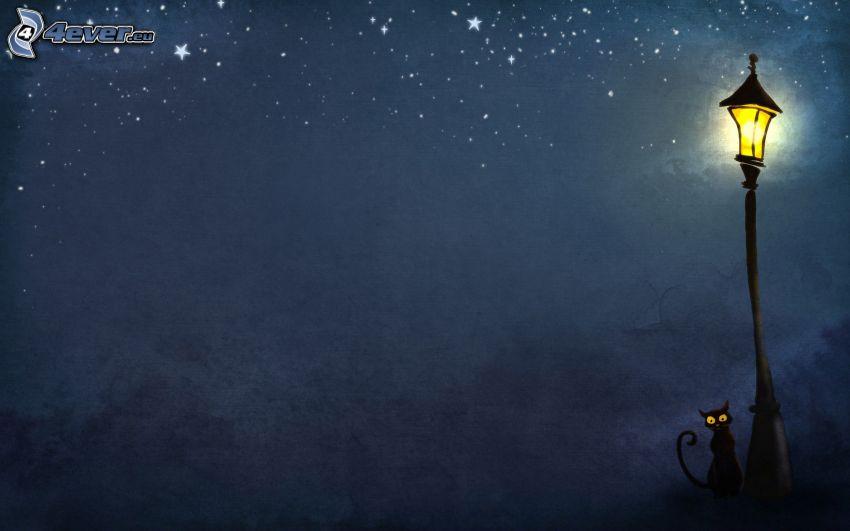 lampa, czarny kot, noc, gwiazdy