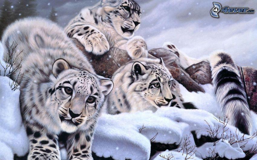 lamparty, śnieg