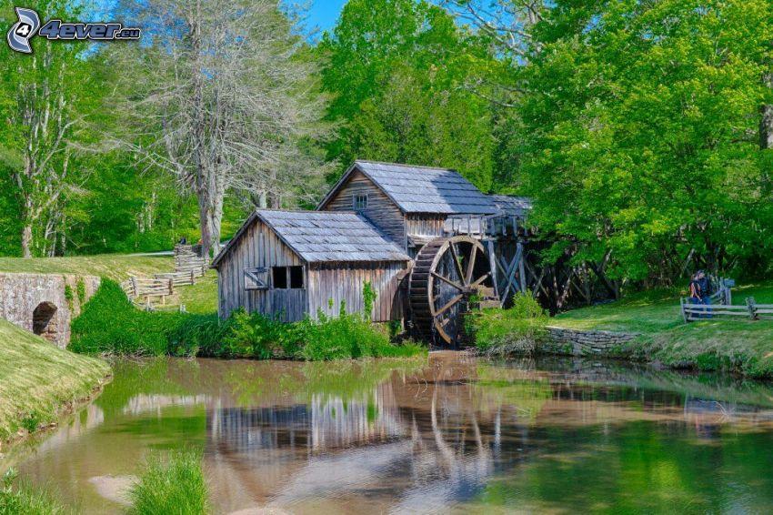 Mabry Mill, rzeka, zielone drzewa, las