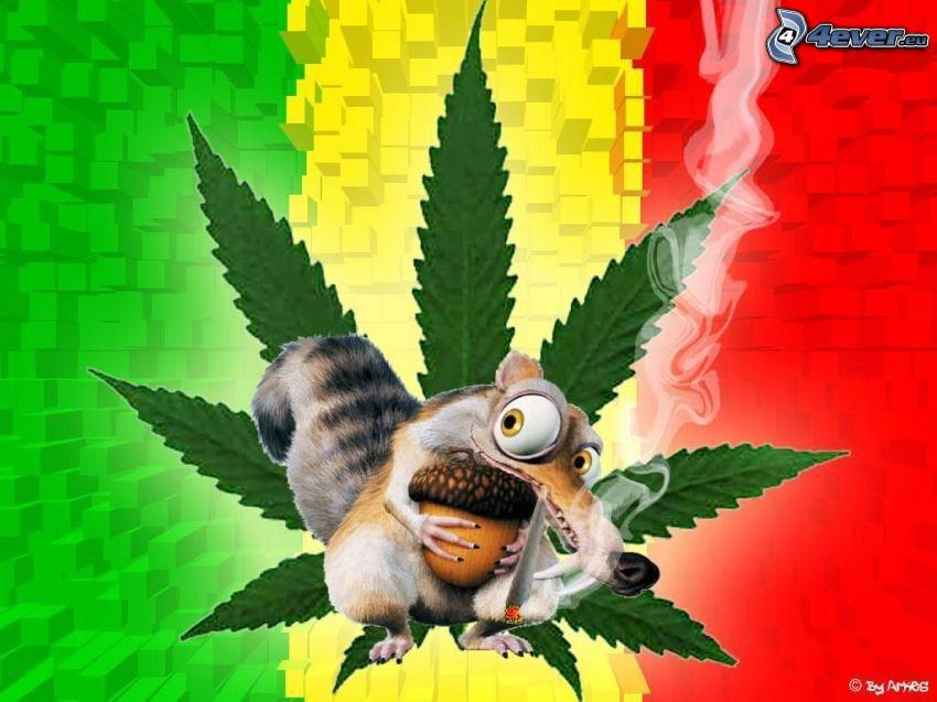 marihuana, wiewiórka z filmu Epoka lodowcowa