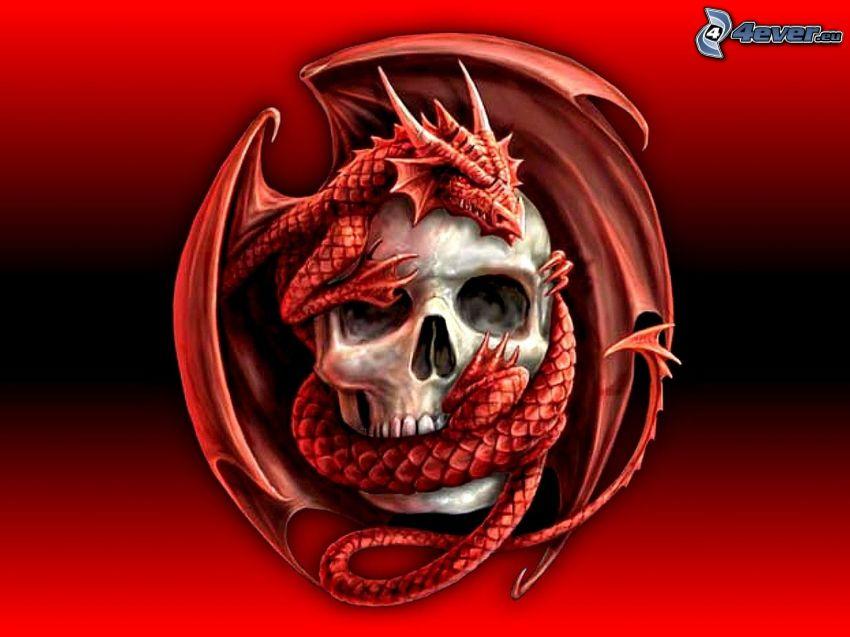 czaszka, czerwony smok