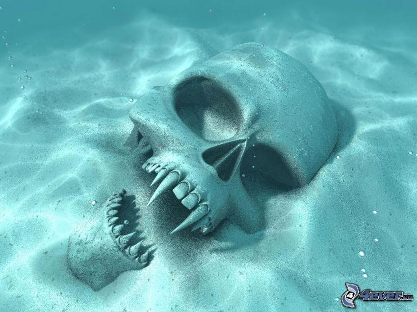 czaszka, morskie dno, piasek, wampir