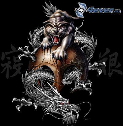 smok i tygrys