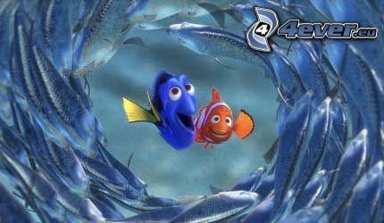 Nemo, ryba