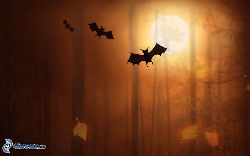 nietoperze, jesienny las, księżyc