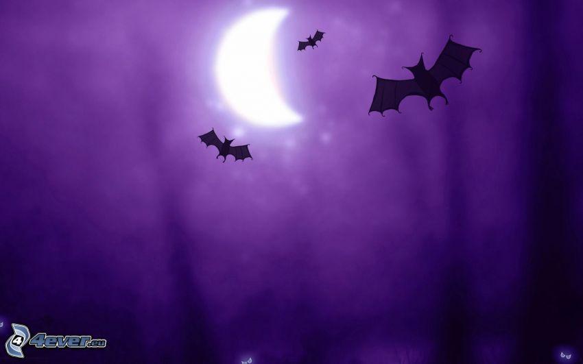 nietoperze, księżyc, fioletowe tło