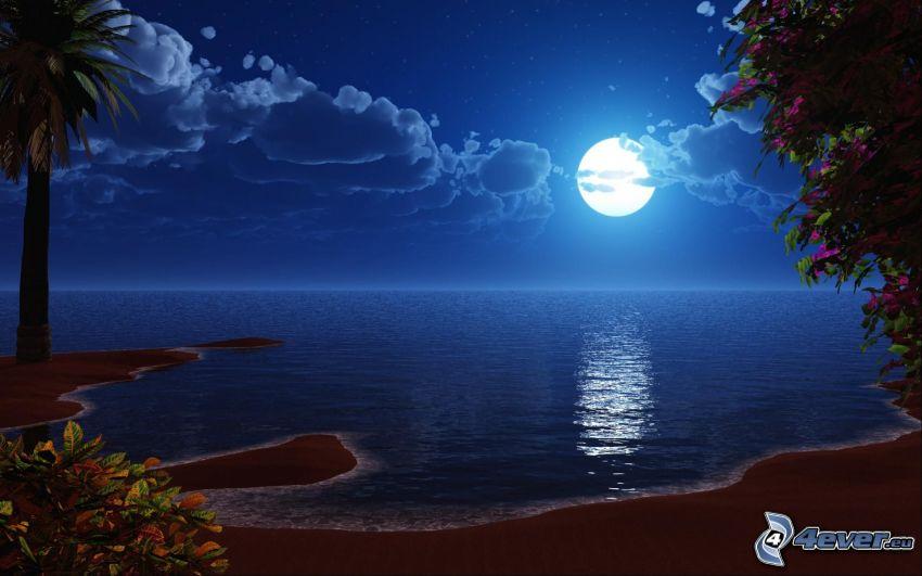 noc, księżyc, morze, palma, chmury