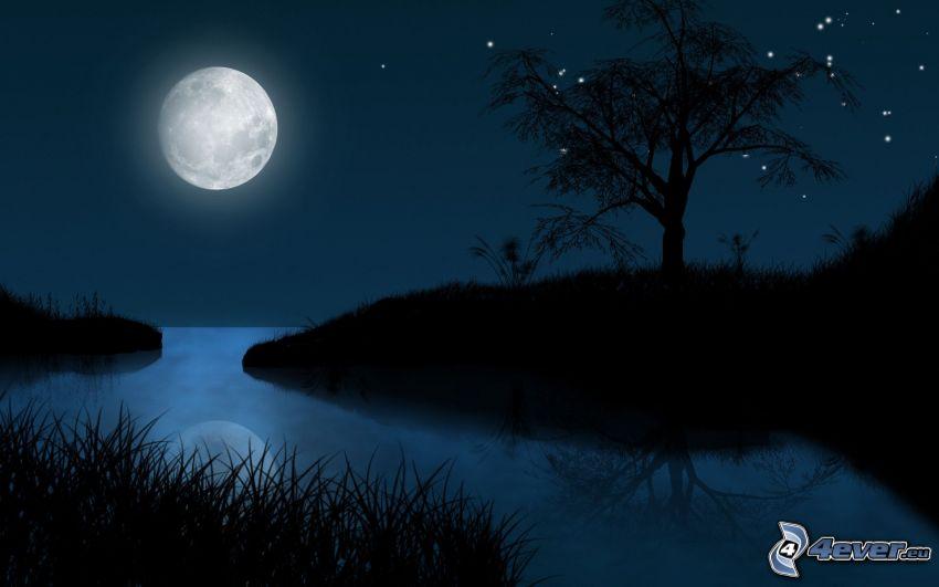 noc, księżyc, sylwetka drzewa, rzeka