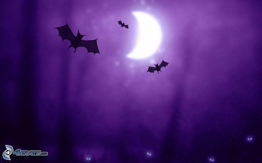 noc, nietoperze, księżyc, fioletowe tło