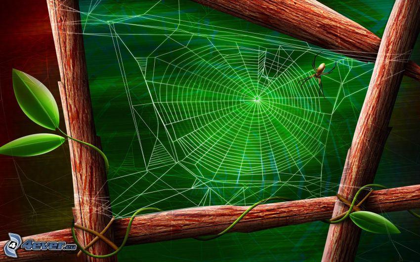 pająk na pajęczynie, drewno, zielone liście