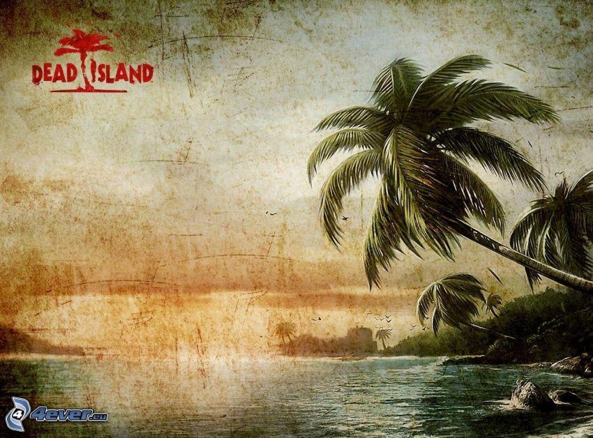 palmy, morze