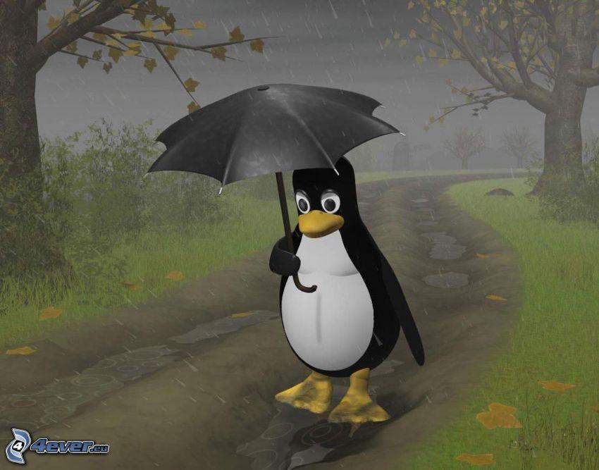 pingwin, burza, deszcz, parasol, jesień, trawa