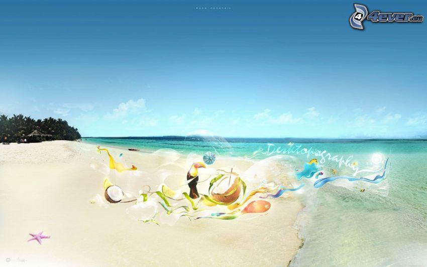plaża piaszczysta, Tukan, orzech kokosowy, morze