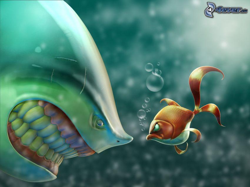 pomarańczowo- biała rybka, rekin, zęby, spojrzenie