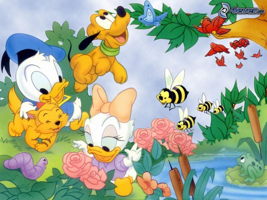 Postacie Disneya, Kaczor Donald, bajka, zwierzątka