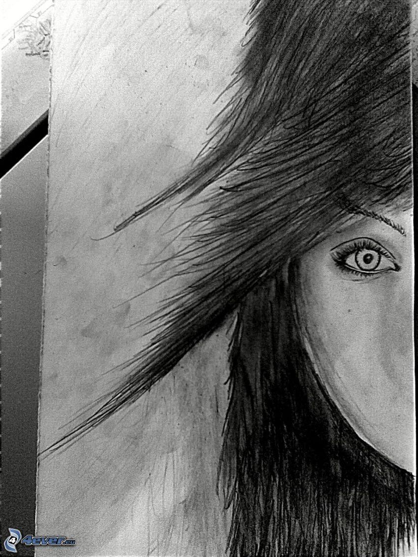 kobieta narysowana, oko, ciemne włosy