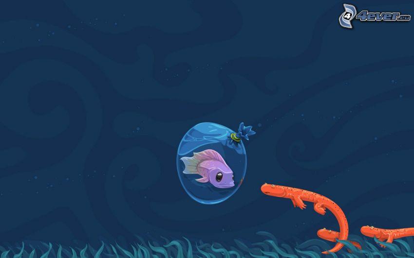 ryba, morskie zwierzątko