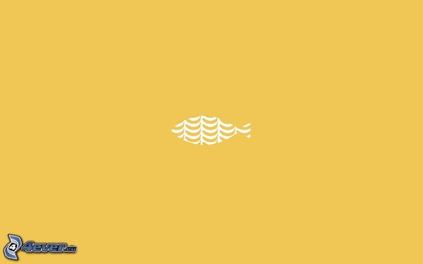 ryba, żółte tło