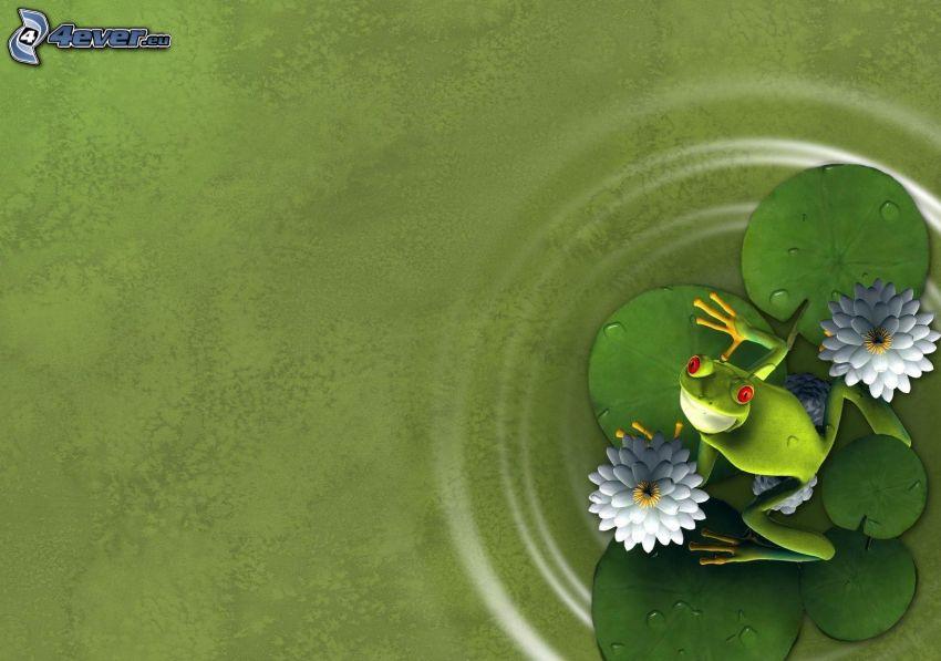rzekotka drzewna, lilie wodne