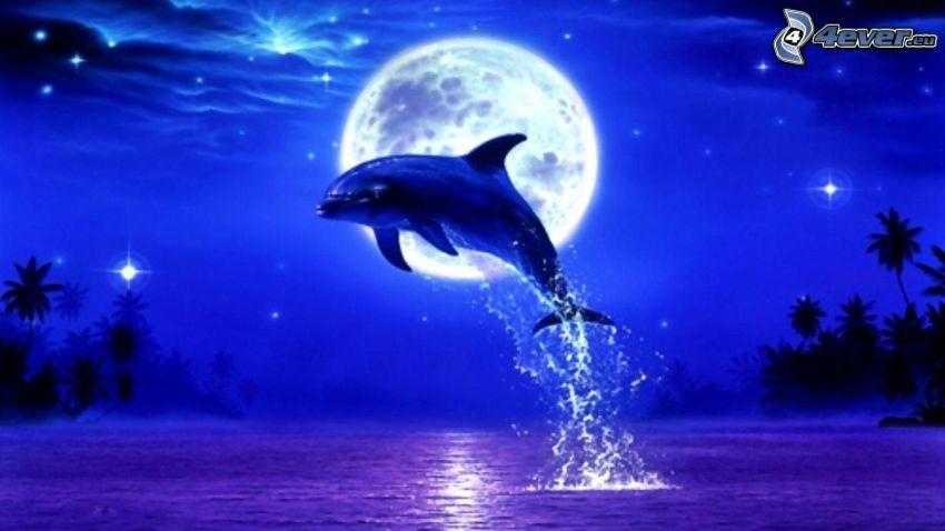 skaczący delfin, księżyc, pełnia