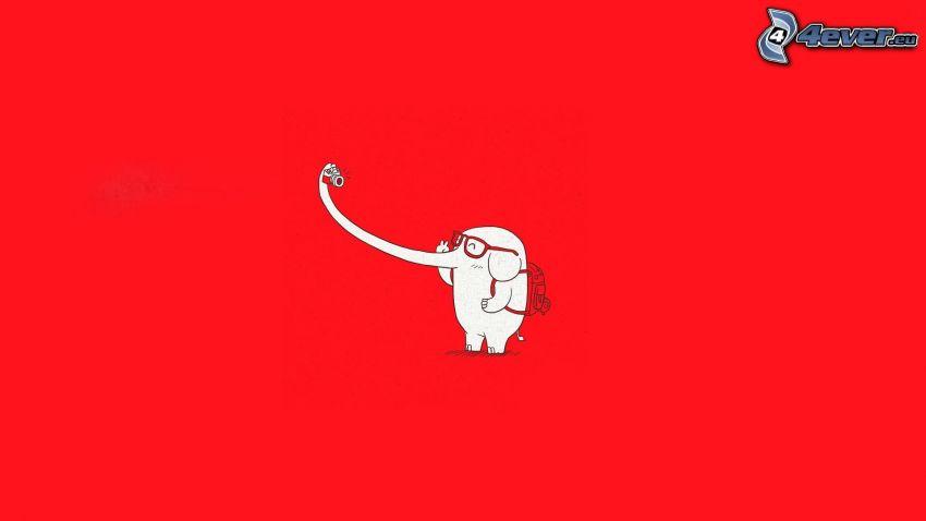 słoń, czerwone tło