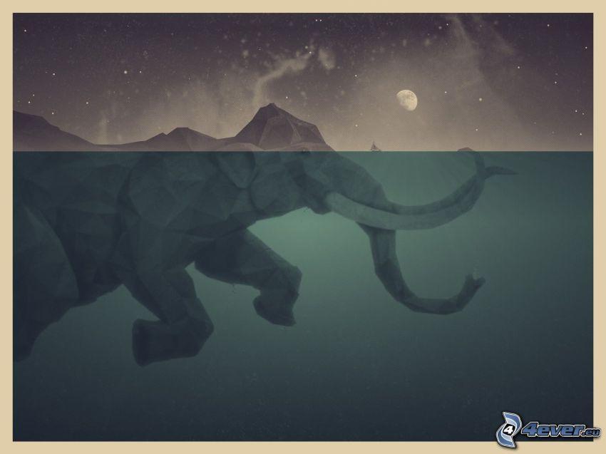 słoń, morze, księżyc