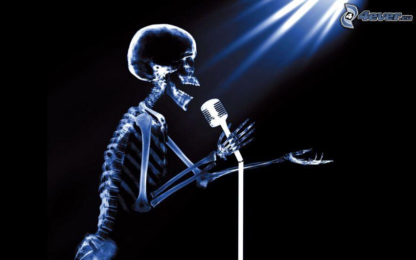 szkielet, piosenkarz, mikrofon