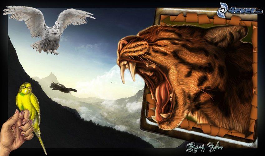 tygrys, sowa, papuga