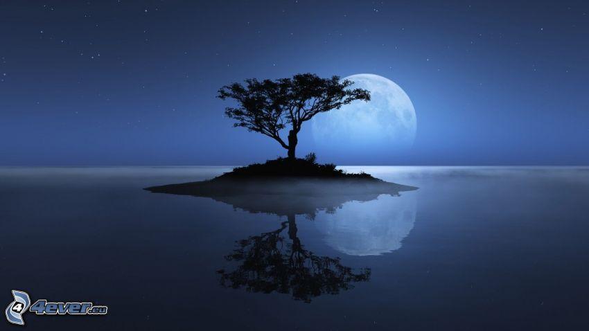 wyspa, sylwetka drzewa, księżyc, morze
