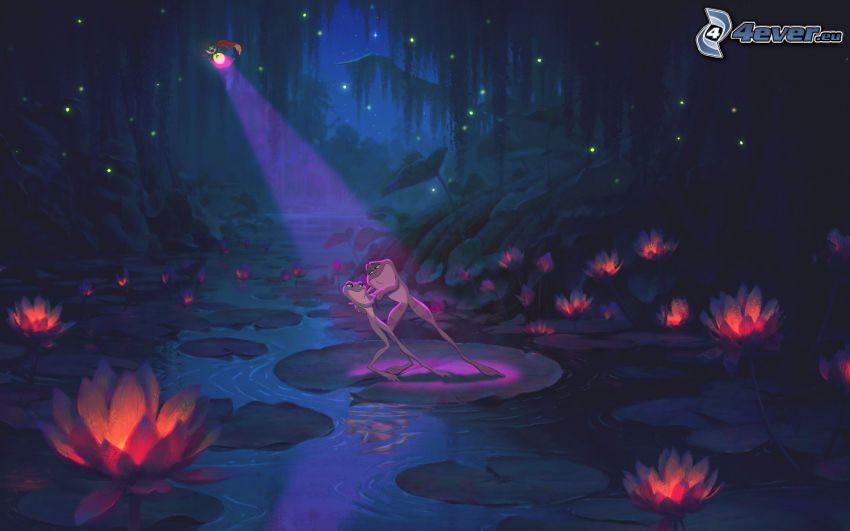 Żaby, taniec, lilie wodne, noc