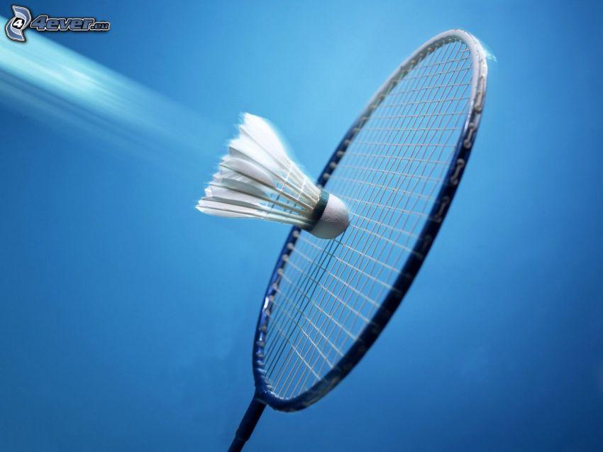 badminton, rakieta