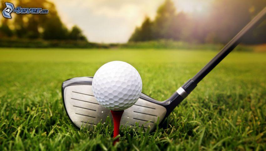 golf, piłka golfowa, kij golfowy, trawnik