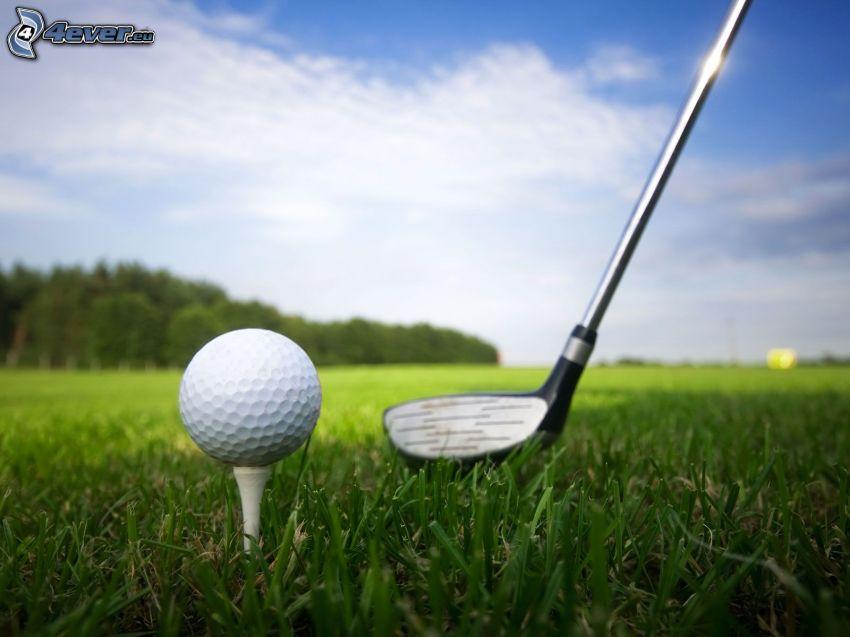 golf, trawa
